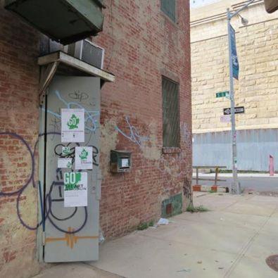 Go Brooklyn Jennifer Merdjan Image 11