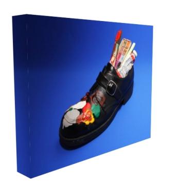 Shoe Canvas Print Side View